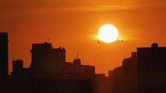 Ocaso 20AGO18 (Nélio Macedo) Tags: ocaso poente sol sun sunset fortaleza ceará