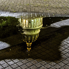 Capitol Reflection (jmhutnik) Tags: westvirginia dome charleston reflection puddle night bricks gold capitol