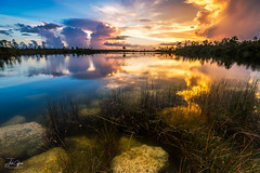 Calm Before the Storm (J.Coffman Photography) Tags: big cypress everglades national park landscape trees swamp water reflections florida united states forest marsh clouds nikon d810 hike hiking wilderness sunshine fl state preserve wet season sunset sky tree lake