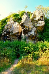 Creswell Craggs, Limestone Gorge, Nottinghamshire (AMShaw1991) Tags: cresswellcraggs iceage caves nottinghamshire