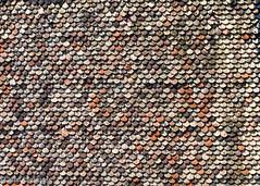 Cathedral mosaic (Jhopne) Tags: geneva saintpeterscathedralgeneva cathédralesaintpierregenève stpeter cathedral switzerland saintpierre genève minimalist suisse tiles aug18 roof rooftop canoneos5dmarkii cathédrale canonef2470mmf28lusm