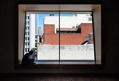 Shadowbox (stvjackson) Tags: california olympus sfmoma sanfrancisco cityscape omdem5 silhouette urban window