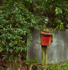 P1040704 A lonely postbox (Bakeling) Tags: durianplantation postbox balikpulau red penang 槟城旅游 浮罗山背 槟城 榴莲园 邮箱 红色 pos petipos