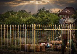 Happy Fence Friday