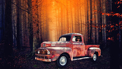Does It Have To Be Black And White? No, Not Always! (Alfred Grupstra) Tags: oldfashioned retrostyled old outdoors car red obsolete nature nopeople forest landvehicle tree autumn antique woodland yellow colorimage nonurbanscene transportation sunlight composedscene