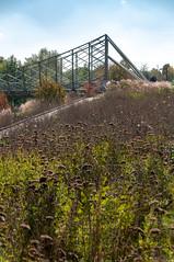 Passerelle du Graoully (Metz, France)-110 (MMARCZYK) Tags: metz grandest france moselle 57 parc de la seille pont ost bridge passerelle kosmi terrell ouvrage dart ingenierie paysage