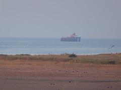 Tankerton (Alex-397) Tags: beach sea seaside coast england uk britain kent tankerton whitstable