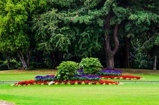 Phoenix Park of Dublin (Ireland)