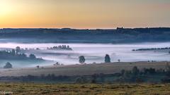 17092018-DSC_0007 (vidjanma) Tags: plaine brume matin sunrise ardenne