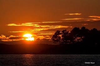 Soleil couchant sur le bassin d'Arcachon