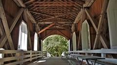 DSC02904 (2) Internal-Structural (Allen Woosley) Tags: ritner creek bridge highway 223 polk county oregon