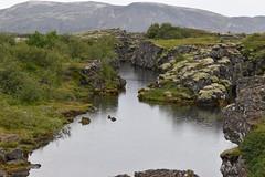 Thingvellir National Park 04