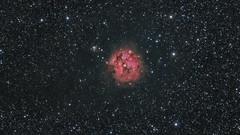 Cocoon Nebula (zoom) (pete_xl) Tags: ic5146 cocoonnebula astrometrydotnet:id=nova2772783 astrometrydotnet:status=solved