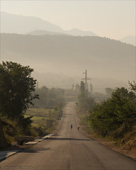 Albanian Road (Torsten Frank) Tags: albanien asphalt bikepacking dunst fusgänger gebirge hausrind kuh mensch menschen morgen passanten radrennen radsport rinder skanderbeggebirge strase strasenbelag tcrno6 tier transcontinentalrace verkehr qarkuidurrësit al