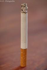 Zigarette / Cigarette (R.O. - Fotografie) Tags: zigarette cigarette fag rofotografie closeup nahaufnahme close up panasonic lumix dmcgx8 olympus 60mm macro bokeh dmc gx8