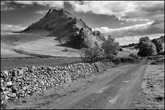 Parkhouse Hill from Dowel Dale (G. Postlethwaite esq.) Tags: bw derbyshire parkhousehill sonya7mkii staffordshire autumn blackandwhite cattlegrid clouds drystonewall fullframe gate mirrorless monochrome photoborder road sky trees