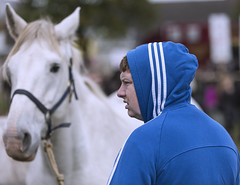 Blue and white (Frank Fullard) Tags: frankfullard fullard candid street portrait horse white blue hoodie fair ballinasloe galway irish ireland festival tradition heritage selling sale stripes bridle equestrian animal farmer contrast