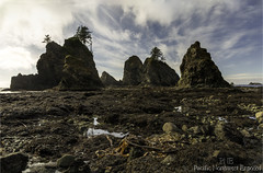 Rocks 2292 (All h2o) Tags: shi beach olympic national park pacific northwest ocean sea coast seaside seastack stack rock sky landscape washington state
