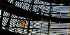 the german helix (bilderkombinat berlin) Tags: ⨀2018 berlin reichstag city capital eu germany banner flag dome backlight lines silhouette helix curves day architecture kuppel tiergarten normanfoster cúpula citysights pixoom berlinforyou bundesschnecke