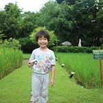 IMG_0067 thumbnail