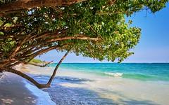 Koh Samet, Thailand (Vest der ute) Tags: g7xm2 thailand sea water seascape trees tree sand beach sky bluesky waves foam landscape fav25 fav200