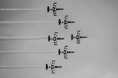 Baltic Bees (mwisniewski91) Tags: red blackandwhite balticbees aerobatic team planes jet jets smoke flying formation aviation airshow gdynia fast bw bnw nikon d810 sky clouds