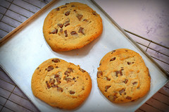 Cookies (Tony Worrall) Tags: add tag ©2018tonyworrall images photos photograff things uk england food foodie grub eat eaten taste tasty cook cooked iatethis foodporn foodpictures picturesoffood dish dishes menu plate plated made ingrediants nice flavour foodophile x yummy make tasted meal nutritional freshtaste foodstuff cuisine nourishment nutriments provisions ration refreshment store sustenance fare foodstuffs meals snacks bites chow cookery diet eatable forsale stock buy image foodphotography buynow sale sell cookies biscuit