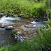 Dreamy Mountain Stream