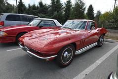 Corvette (2) (Gearhead Photos) Tags: crescent beacg concours delegance truimph corvette porsche gt3 rs mgb trucks mg toyota mr2 ford tbird austin healey lotus cortina bentley datsun 240z
