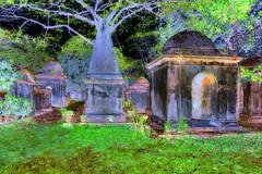 India - West Bengal - Kolkata - South Park Street Cemetery - 3bb (asienman) Tags: india westbengal kolkata southparkstreetcemetery asienmanphotography asienmanphotoart asienmanpaintography