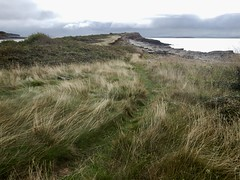 Sully Island h (Dugswell2) Tags: sullyisland p21 tidalisland wales siblet caton