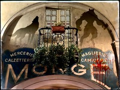 Shadow wolf man (tatianalovera) Tags: red rosso fantastico fantasy horror sangue blood shadow ombra wall muro balcone piemonte piedmont italy italia saluzzo wolfman licantropo lupomannaro lupo wolf