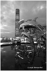 Why Do We Want to Shoot Sunset In B&W? - Hong Kong XT5971e (Harris Hui (in search of light)) Tags: harrishui fujixt1 digitalmirrorlesscamera fuji fujifilm vancouver richmond bc canada vancouverdslrshooter mirrorless fujixambassador xt1 fujixcamera fujixseries fujix fujixf1024mm fujizoomlens bw monochrome blackwhite digitalbw incamerabwfilmsimulation hongkong chinahongkongcity sunset reflection statue sculpture dolphins city citylights