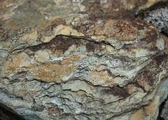 Cornish Slate (Helen Orozco) Tags: macromondays rock slate cornwall metamorphicrock hmm