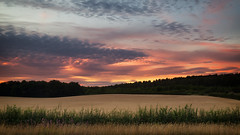 Memories (G-WWBB) Tags: fields sunset redsky red pink clouds yorkshire moody moodysky trees grass landscape colours lowsun leeds