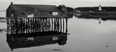 Low Tide 2 (nick.mirkovich) Tags: landscape blackandwhite abandonedplaces waterfront reflections lowtide lubec maine mulhollandpointlighthouse fujifilm xe2