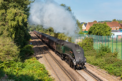 Weymouth Bound (Articdriver) Tags: steam locomotive pacific gresley a4 railways train 60009 unionofsouthafrica surrey virginiawater trees