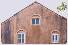 Interesting house with 3 windows and a plant! (MotoFotog) Tags: arvindmanjunath motofotog goa beach india 2015