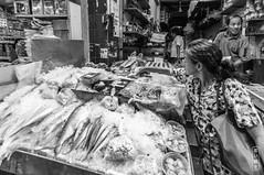 Some Fish? #0094 (svenpetersen1965) Tags: chinatown sampheng soiwanit1 yaowarat bangkok krungthepmahanakhon thailand th