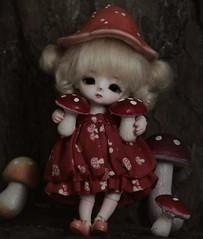 🍂 A U T U M N 🍂 (Loony-Doll) Tags: loongsoul jomee loongsouljomee mouse mushroom doll bjd dolls makeup fullset glasseyes eyes wig
