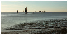 294A4790-Edit.jpg (merseamillsy) Tags: smack thamesbarge oystersmack barge colnebargematch sailing