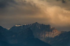 Morning in the Rockies (Bracus Triticum) Tags: morning rockies 9月 九月 長月 くがつ kugatsu nagatsuki longmonth 2018 平成30年 fall autumn september アルバータ州 alberta canada カナダ