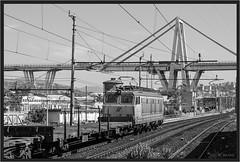 "Ponte Morandi con Tigre ("" Wiener Schule "") Tags: genova italy e652 tigre fs railway railroad eisenbahn ponte morandi pontemorandi sampierdarena rivarolo polcevera bridge mir trenitalia"