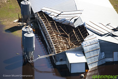 Hurricane Florence North Carolina Aftermath (Greenpeace USA 2016) Tags: hurricane aerial flooding florence northcarolinahogfarm damage whiteoak northcarolina unitedstates usa