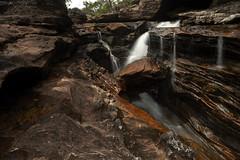 Caño Cristales (pbertner) Tags: canocristales waterfall lamacarena southamerica colombia river riocincocolores rainbowriver canyon