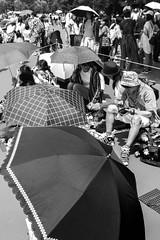 © Zoltan Papdi 2018-4602 (Papdi Zoltan Silvester) Tags: japon japan tokyo réel rue vie gens humain voyage journalisme real street life people human trip journalism paysage vue pointdevue landscape view pointofview disneyland groupe group