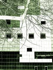 living in rectangles (nika.vero) Tags: architecture geometrical house windows rectangles rectangle dark experimental geenish green tree geometric
