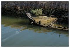 Don't rock my boat (Outlaw Pete 65) Tags: baca boat legno wood erba grass acqua water pietre stones fujixe3 fujinon1855mm cavallinotreporti veneto italia