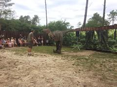 Dinosaure Parc - Azur (gab113) Tags: dinosaure parc landes spectacles