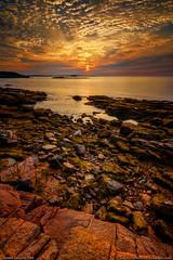 Acadia National Park Sunrise (Greg from Maine) Tags: acadianationalpark acadia sunrise maine nationalpark mountdesertisland barharbor barharbormaine cruise cruiseship ocean coast rockycoast clouds sky lowtide reflection trees landscape seascape